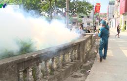 Nguy cơ bùng phát sốt xuất huyết tại ngoại thành Hà Nội