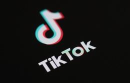 Mạng xã hội TikTok tham gia bộ quy tắc ứng xử của EU