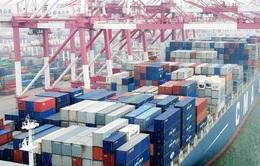 WTO: Thương mại toàn cầu có thể suy giảm kỷ lục