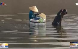 Nghề đào dời biển trên đầm Thủy Triều