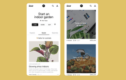 Google ra mắt mạng xã hội chia sẻ hình ảnh tích hợp AI