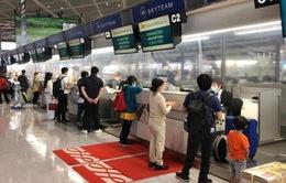 Đưa 342 công dân Việt Nam từ Nhật Bản về nước