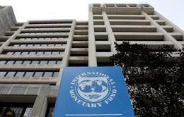 """IMF công bố 2 hai kịch bản kinh tế toàn cầu: """"Trên đỉnh cao hoặc dưới vực sâu"""""""