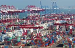 Mỹ cân nhắc áp thuế với khối lượng hàng hóa châu Âu trị giá 3,1 tỷ USD