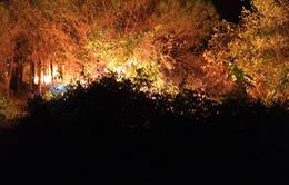 Hàng trăm người chữa cháy rừng tại Hà Tĩnh trong đêm