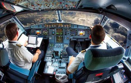 20 người bị tạm đình chỉ, tất cả đều là phi công có quốc tịch Pakistan