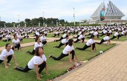 Gần 1.000 người đồng diễn nhân Ngày Quốc tế Yoga tại Ninh Thuận