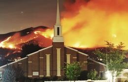 Đốt pháo hoa khiến 80ha rừng bị cháy rụi tại Mỹ