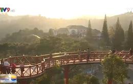 Lâm Đồng: Nhiều chương trình giảm giá kích cầu du lịch đến hết năm 2020