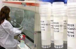 Nhật Bản sẽ thử nghiệm sử dụng tế bào gốc để chữa trị cho bệnh nhân COVID-19