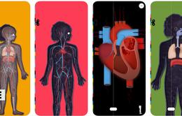 Khám phá hoạt động của cơ thể với ứng dụng The Human body lite