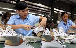 Liên kết chuỗi cung ứng da giày để tận dụng cơ hội từ EVFTA