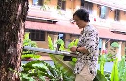 """Máy """"khám bệnh"""" cho cây xanh ở TP.HCM: Mua tiền tỷ, 15 năm vẫn chỉ để làm… thí nghiệm"""