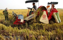 Thủ tướng ra Chỉ thị về đẩy mạnh cơ giới hóa sản xuất nông nghiệp