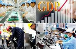 Bộ trưởng Bộ Kế hoạch và Đầu tư làm trưởng BCĐ Tổng điều tra kinh tế Trung ương năm 2021