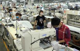 Hậu COVID-19, các nước đang phát triển cân nhắc lại cấu trúc nền kinh tế