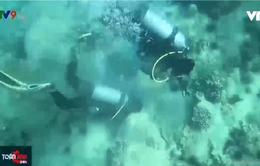 Huy động cộng đồng bảo vệ môi trường biển