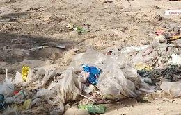 Công bố 2 dự án xử lý rác thải nhựa ven biển