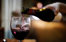Rượu vang Pháp tồn kho vì dịch biến thành… nước rửa tay