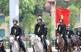 Đội tuấn mã của lực lượng Cảnh sát cơ động Kỵ binh: Nhỏ mà có võ