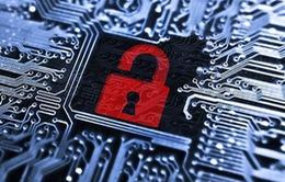 Cảnh báo nguy cơ tin tặc tấn công cổng thông tin điện tử của các cơ quan Nhà nước