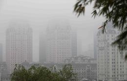 Ban bố tình trạng khẩn cấp nếu không khí ô nhiễm nghiêm trọng?