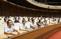 Quốc hội biểu quyết thông qua Nghị quyết chương trình giám sát của Quốc hội năm 2021