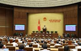 Đề xuất nâng tỷ lệ đại biểu Quốc hội chuyên trách lên ít nhất 40%