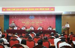 Ban Nội chính Trung ương tham gia xử lý 120 vụ án tham nhũng, kinh tế nghiêm trọng