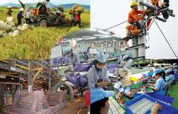 Nền kinh tế Việt Nam có sức chống chịu tốt