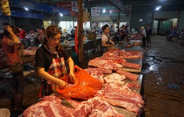 Cung cầu gặp nhau, giá thịt lợn sẽ có mặt bằng giá mới