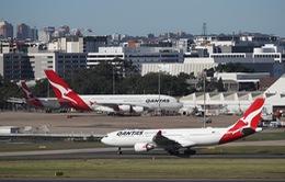 """Các hãng hàng không châu Âu """"cầu cứu"""" sự hỗ trợ từ khách hàng"""