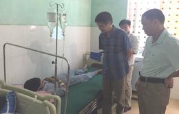 Lào Cai: Ăn ngọn cà độc dược luộc, 3 người ngộ độc