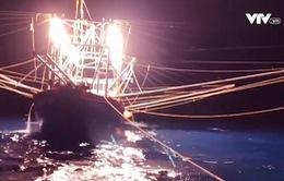Tàu câu mực của ngư dân bị tàu hàng đâm chìm trên biển