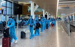 """Tránh sập bẫy vé """"rởm"""", công dân Việt Nam tại nước ngoài hồi hương cần lưu ý điều này"""