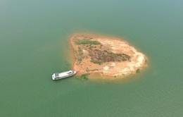 Hàng triệu con cá giống được thả xuống giữa lòng hồ thủy điện lớn nhất miền Nam
