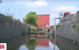 Bắc Ninh: Tưới rau xanh bằng nước thải đen ngòm