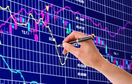 """Thị trường chứng khoán sau 20 năm: Kênh huy động vốn """"huyết mạch"""""""
