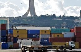 Algeria tạm ngừng nhập khẩu đối với 13 mặt hàng trái cây