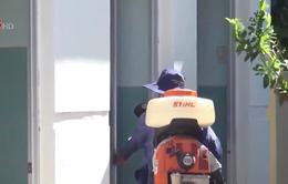 Phú Yên phun hóa chất diệt muỗi và bọ gậy trên phạm vi toàn tỉnh