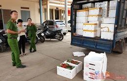 """Hơn 3 tấn dâu tây không rõ nguồn gốc """"tuồn"""" vào Đà Lạt"""