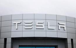Bước nhảy ngoạn mục của Tesla giữa mùa đại dịch