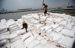 Để hưởng ưu đãi thuế quan theo EVFTA, DN xuất khẩu gạo cần tiêu chí gì?