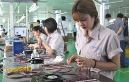 Vừa thiếu lại vừa yếu, giải pháp nào cho ngành công nghiệp hỗ trợ Việt?