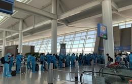 Đưa hơn 310 công dân Việt Nam từ Hàn Quốc về nước