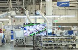 63% công ty Nhật tại Việt Nam sẽ mở rộng kinh doanh