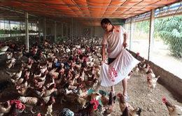 Người Việt vượt qua khó khăn kinh tế vì biết tiết kiệm