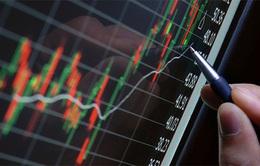 Cùng đà tăng với thế giới, VN-Index vượt 810 điểm