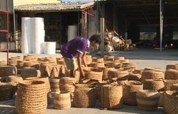 Khát vọng giữ nghề ở làng cói Nga Sơn trong đại dịch COVID-19
