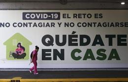 11,3 triệu người mắc COVID-19 trên toàn cầu, hơn 532 nghìn ca tử vong